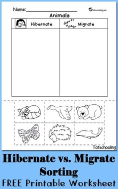 FREE worksheet to sort between animals who hibernate and migrate. Great science cut and paste activity for kindergarten and preschool.