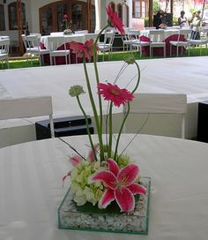 arreglos florales para lots of tables and a small budget to do the flowers. Floral Centerpieces, Table Centerpieces, Wedding Centerpieces, Wedding Decorations, Arrangements Ikebana, Table Arrangements, Floral Arrangements, Decoration Plante, Decoration Table