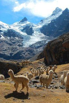 Nevado Ausangate, Cusco