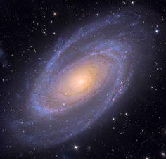 M81 | Mt. Lemmon SkyCenter