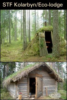 Take a Tour of Sweden's Most Primitive Hotel! Natural Homes, Tiny Living, Survival Tips, Backyards, Lodges, Sweden, Primitive, New Homes, Outdoors