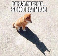 Damn i'm batman