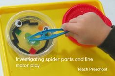 Investigating the parts of a spider by Teach Preschool
