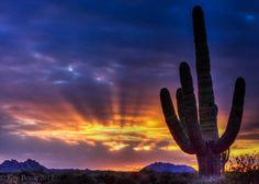 Sunset in McDowell Mountains, Fountain Hill, Arizona, USA