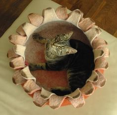 Cat bed/cat house/cat cave/ houseleek felted cat bed by elevele,