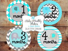 Hey, I found this really awesome Etsy listing at https://www.etsy.com/listing/161618888/monthly-baby-stickers-monthly-bodysuit