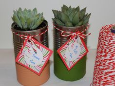 DIY Holiday Gift: Organic Succulents In Recycled Paint Dipped Cans