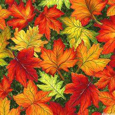 Fall Reflections - Oak & Maple Blaze - Forest Green
