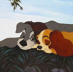 Lady and the Tramp. I LOVE THIS IMAGE! Its so tender and sweet! <3