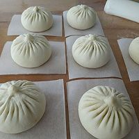 Chinese Baozi ( Steamed bun with pork filling) – Simple Easy Chinese Cooking Steamed Bun Dough Recipe, Siopao Dough Recipe, Steamed Pork Dumplings, Steamed Pork Buns, Chinese Street Food, Best Chinese Food, Easy Chinese Recipes, Chinese Steam Bun Recipe, Steam Buns Recipe