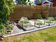 inredningoutredning: Köksträdgård! Small Vegetable Gardens, Home Vegetable Garden, Back Garden Design, Veggie Patch, Outdoor Furniture Sets, Outdoor Decor, Garden Inspiration, Garden Ideas, Back Gardens