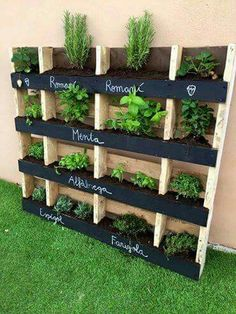 I like the black board paint . Could be done with a pallet box vertical garden .