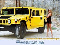 h3-gelb.jpg 700×523 Pixel