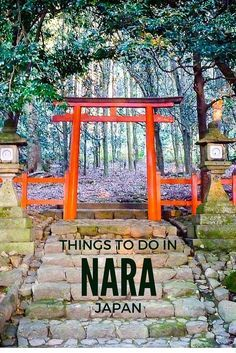 Read our local's guide of top things to do in Nara. From temples, to deer park and amazing food we share the best tips to make the most of your trip to Nara New Travel, Asia Travel, Italy Travel, Sweden Travel, Arizona Travel, Tokyo Travel, Sedona Arizona, Rome Travel, Train Travel