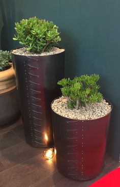 100% Design Unusual Planters http://indigenus.co.za/products/