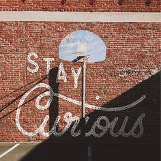 Stay curious | by Sean Tulgetske