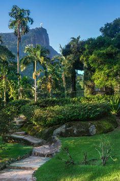 things to do in Rio de Janeiro Botanical Gardens