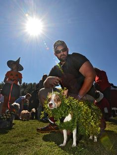 SHE'S A CHIA-HUAHUA: Gary Boggs dressed up his pint-sized pooch, Aryel, as an ambulatory Chia Pet during the First Coast No More Homeless Pets costume contest in Jacksonville, Fla. Photo: Bob Mack, Associated Press
