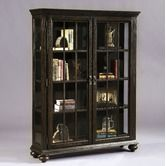 Found it at Wayfair - Curio Bookcase