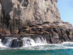 Seal Rock, Cabo San Lucas, Mexico