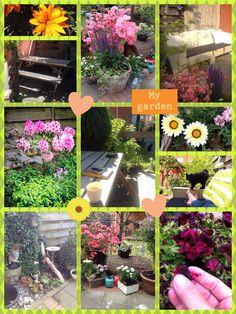 Love my garden...