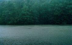 Print:  Rainfall,  Upstate New York by Chikara Umihara