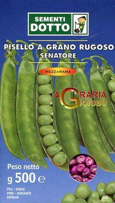 SEMI DI PISELLO MEZZA RAMA SENATORE GR. 500 https://www.chiaradecaria.it/it/semi-di-legumi/16341-semi-di-pisello-mezza-rama-senatore-gr-500-8006555056594.html