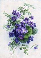 vintage violets on postcard Art Floral, Vintage Diy, Vintage Paper, Vintage Greeting Cards, Vintage Postcards, Vintage Pictures, Vintage Images, Vintage Flowers, Vintage Floral