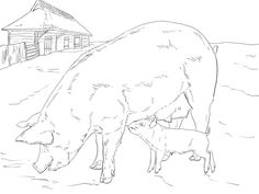 Pig Family coloring page from Pig category. Select from 31983 printable crafts of cartoons, nature, animals, Bible and many more. Coloring Pages Nature, Family Coloring Pages, Animal Coloring Pages, Coloring Pages For Kids, Adult Coloring, Kids Coloring, Pig Images, Pig Family, Printable Crafts