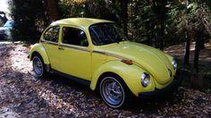 1973 Volkswagen Sport Bug