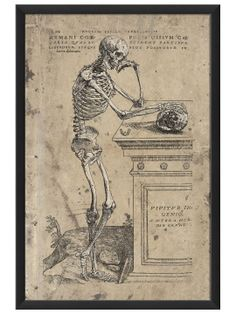 artwork enclosed humanis corporis ossium cae    a neat twist of the traditional memento mori theme-- a reproduction medical poster
