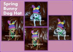 Posh Pooch Designs Dog Clothes: Spring Bunny Dog Hat | Posh Pooch Designs