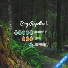 Bug Repellent - Essential Oil Diffuser Blend