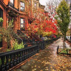 Autumn, Brooklyn, New York City by @travelinglens