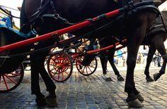ride // Rome // Italy