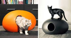 Cool sleek modern litter box - Also known as the Poopoopeedo lol