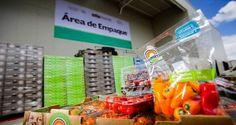 Asia y la Unión Europea, los nuevos mercados para las exportaciones mexicanas