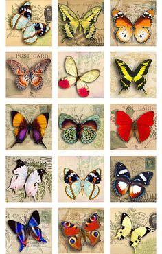 Best 11 Butterflies Vintage Postal Cards Digital Images by pixeltwister Vintage Clipart, Vintage Postcards, Butterfly Pictures, Butterfly Art, Butterfly Template, Butterfly Dragon, Monarch Butterfly, Collages D'images, Crewel Embroidery