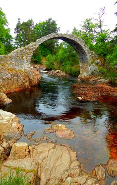 "fuckitandmovetobritain: "" Carrbridge, Cairngorms, Scottish Highlands, Scotland, UK """