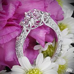 3 Stone Coeur de Clara Ashley Diamond Engagement Ring with a 0910ct Expert Selection