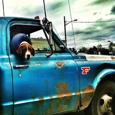 If it's going to be a truck, it had better be a Ford- and one that comes with a dog riding shotgun. ♡... Re-pin by StoneArtUSA.com ~ affordable custom pet memorials for everyone.
