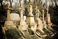 Highgate Cemetery. I used to go and walk around in this East London cemetery. It is so beautiful.