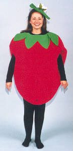 strawberry costume Google Image Result for http://www.magicmakers.com/animal%2520jpg/strawberry.jpg