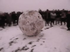 HMB let me roll the snow ball : holdmybeer
