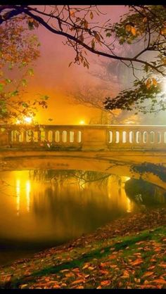 ~Autumn Mist~Look at this beautiful picture!It's so calming!