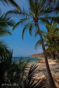 beach, Las Caletas, Puerto Vallarta, Mexico by nell