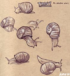 Tracy the Snail by Kobb on DeviantArt