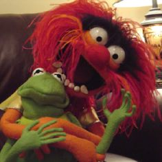 Muppets. Look at their faces. They're made of felt yet have more expression than half of the population
