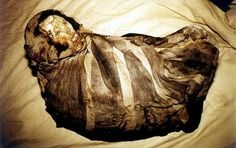 """Momia Juanita (Spanish for """"Mummy Juanita""""), also known as the Inca Ice Maiden and Lady of Ampato, is the well-preserved frozen body of an Incan girl who was killed as an offering to the Inca gods sometime between 1450 and 1480, at approximately 11–15 years old. She was discovered on Mount Ampato (part of the Andes cordillera) in southern Peru in 1995 by anthropologist Johan Reinhard and his Peruvian climbing partner, Miguel Zárate."""