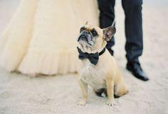 Érase una vez Bodas y Eventos: Una boda de invierno en la playa